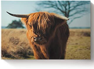 Arts Language DIY Oil Paintings Paint by Numbers Kit with Brushes for Adults/Kids Beginner Scottish Highland Cattle on The Prairie Acrylic Paints on Canvas Wooden Framed Wall Art 16x20in