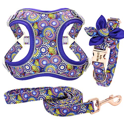 Forestpaw Multi-Colored Dog Harness and Leash Set,Step in Reflective Vest Harness, Personalized Dog Collar and Harness for Small,Medium,Large,French Bulldog,Labrador,Beagles,Samoyed,PeacockBlue,L