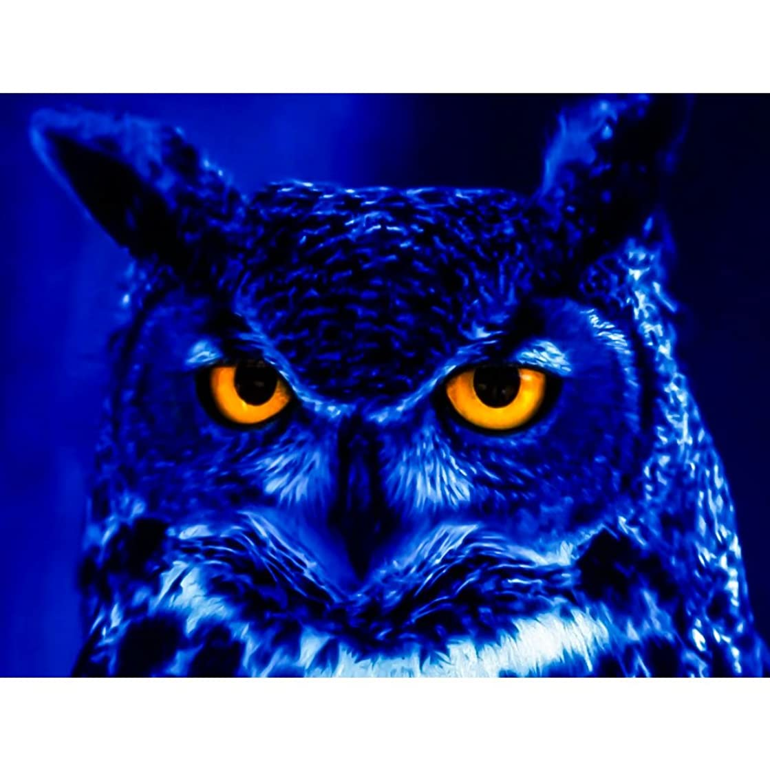 UPMALL DIY 5D Diamond Painting by Number Kits, Full Drill Crystal Rhinestone Embroidery Pictures Arts Craft for Home Wall Decoration Animal Owl 15.75×11.81 inches