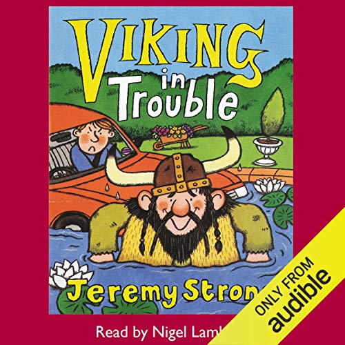 Viking in Trouble cover art