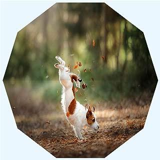 Fashion Travel Umbrella Sun Umbrella UV protection automatic opening and closing, Dog Jack Russell Terrier jump, windproof - rainproof - men - ladies - versatile - 42 inches