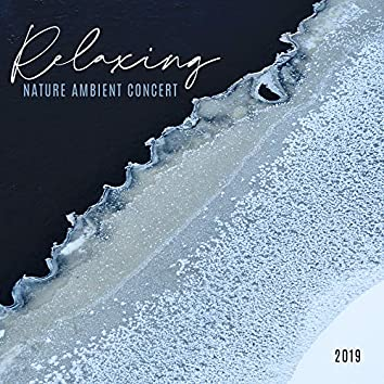 Relaxing Nature Ambient Concert 2019