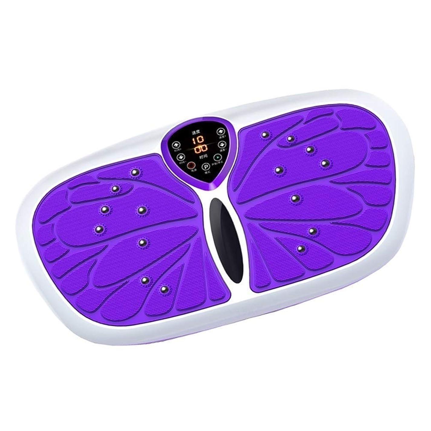 衝突コースウール燃やす力の振動版のトレーナーの運動機械、家の適性の減量のための完全な全身の振動機械、振動試しのプラットホーム機械,紫色