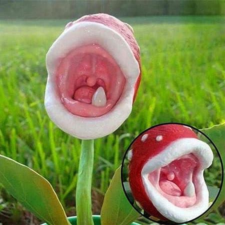 100 Piezas Captura De Insectos Semillas De Flores Planta Carnívora Hogar Jardín Bonsai Decoración Semillas de plantas carnívoras 100 piezas