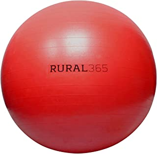 Best large horse ball Reviews