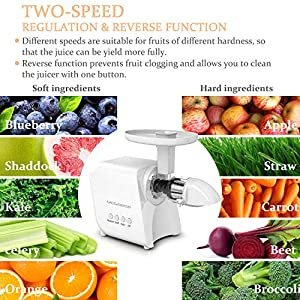 MEGAWISE Slow Masticating Juicer, 9 Segment Spiral 2 Speed Modes Juicer Machines for Vegetables and Fruits, Cold Press… |