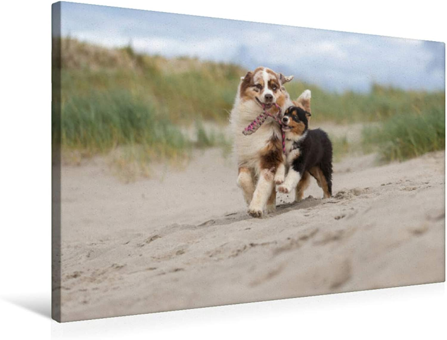 Fun on The Beach for Big and Small, MultiColoured, 75x50