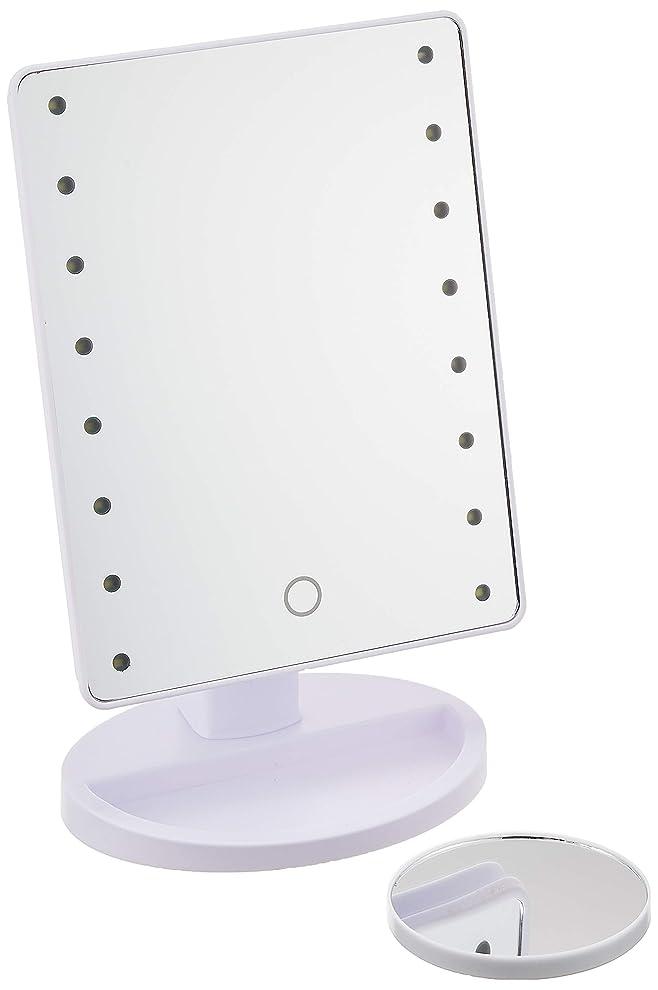 麻痺欲求不満新鮮なHAC ハック 16LED拡大鏡付きメイクアップミラー