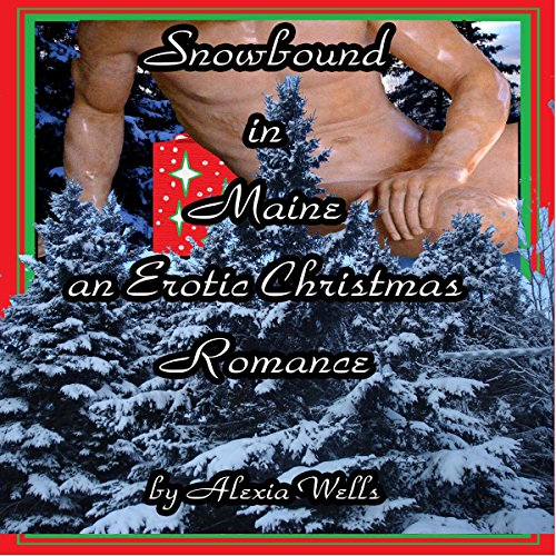 Snowbound in Maine audiobook cover art