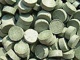 Futtertabletten Spirulina 20% Haft Probiergröße 100 Stück