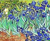 DIY Färbung Gemälde nach Zahlen Van Gogh Gemälde Helle Narzissen Bilder mit Kits Paket40x50cm mit Rahmen
