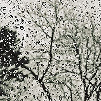 25 Relaxing Rain Sounds for Natural Relaxation