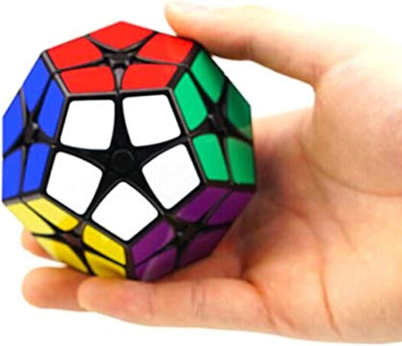 Shengshou Speed Cube Puzzle