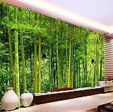 3D Papel Pintado Pared Bosque de bambú de verano Fotomurales Tejido No Tejido Foto Mural Fotográfico Póster Salón Dormitorio TV Telón de Fondo Pared Oficina Hogar Decoración 250x175 cm