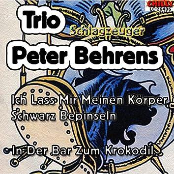Trio Schlagzeuger Peter Behrens
