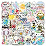 Aesthetic Laptop Stickers for Girls, 50pcs Cute Vinyl Cool Stickers for Skateboard, Water Bottles, Cars, Bumper, Scrapbook