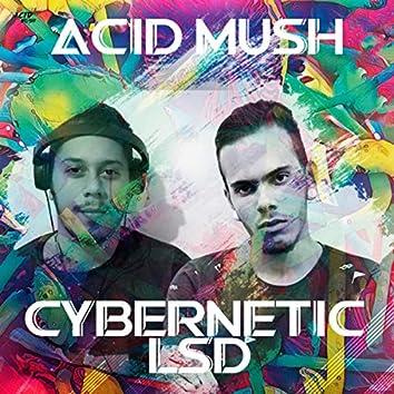 Cybernetic LSD