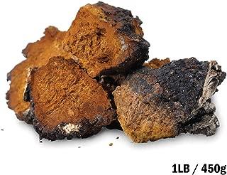 Tealyra - Chaga Chunks - Pure Raw Wild Harvested Canadian Chaga - Mushroom Tea - Superfood - Healthy Immune Booster & Antioxidant - 450g (1-pound)