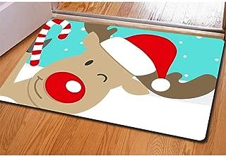 Buybai Doormat Outside, Cool 3D Christmas Reindeer Printed Front Floor Mats Doormats Indoor/Outdoor Bedroom Kitchen Carpet Door Mat