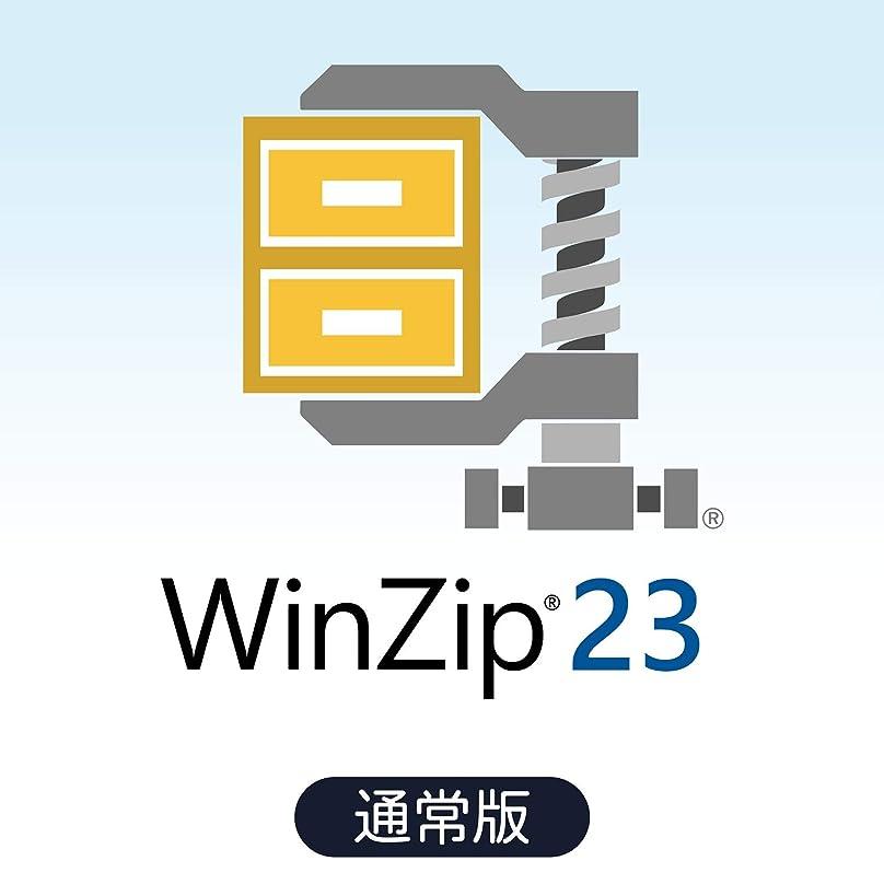 然とした面積政府WinZip 23 Standard 通常版|ダウンロード版