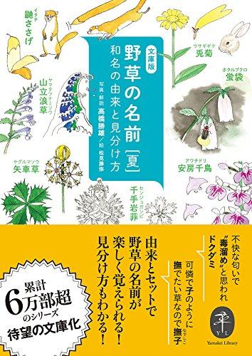 野草の名前 夏 和名の由来と見分け方 (ヤマケイ文庫)の詳細を見る