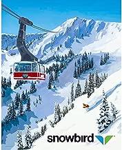 Best vintage ski world Reviews