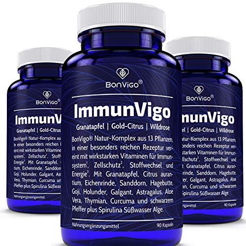 Immun-Kur 135 Tage - 270 Kapseln ImmunVigo 13-Pflanzen-Konzentrat hochdosiert - Immunsystem nachweislich unterstützen mit Vitamin C aus Hagebuttenpulver, B12, B6, A, Kupfer, Zink, Mangan*