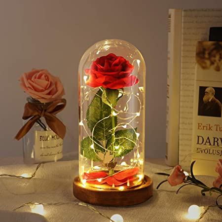 Beauty and The Beast Rose, Best Gift for Mom, Lasts Forever in A Glass Dome, Unique Gifts for Women, Christmas, Wedding, Valentine's Day, Anniversary and Birthday