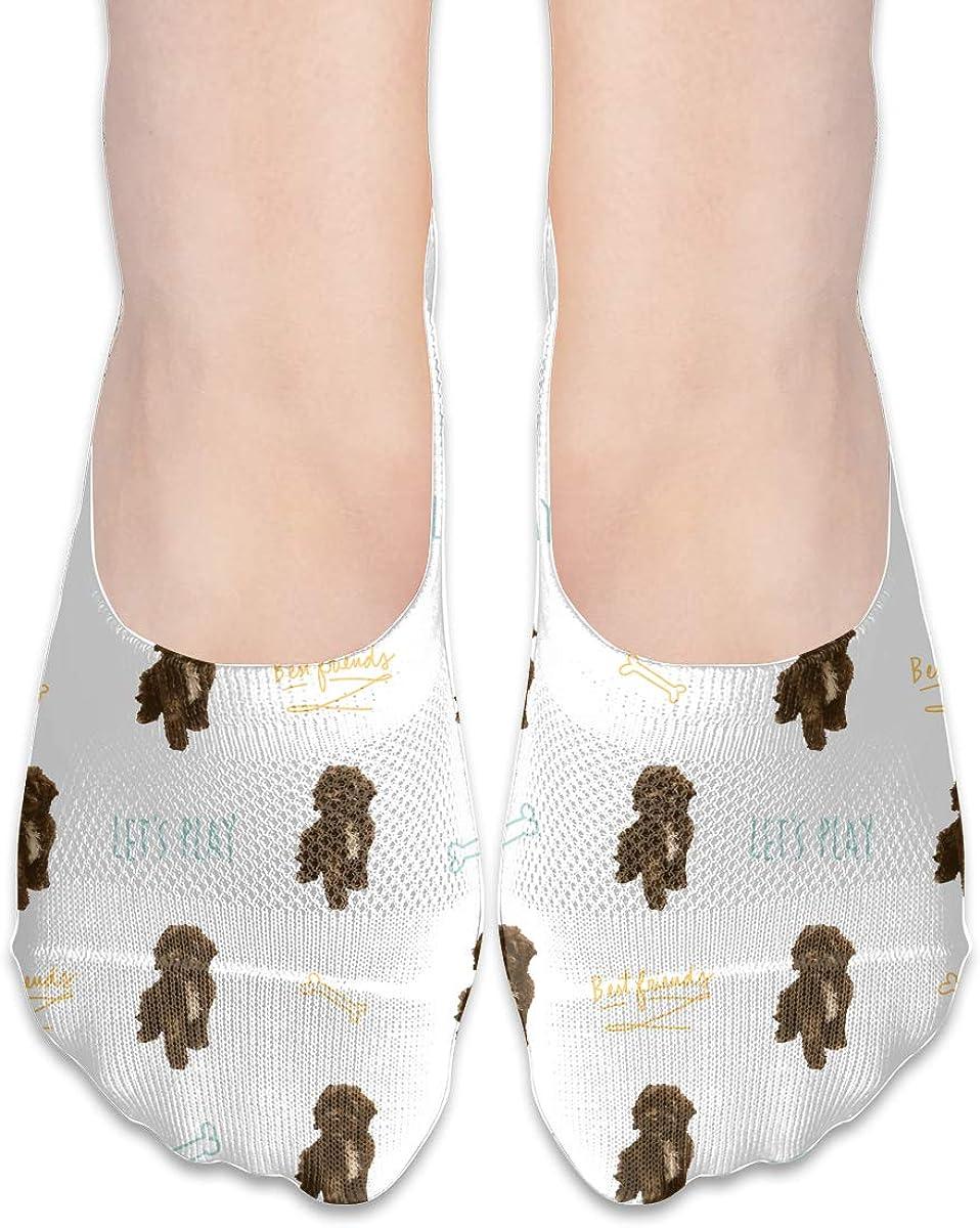 Casual Cute Cockapoo Dog Socks, No Show Socks For Women Men