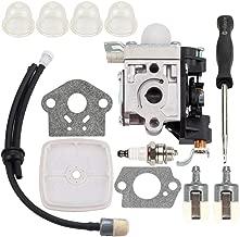 Dxent PB250LN Carburetor with Air Filter Adjustment Tool for Echo PB250 ES250 PB-250 PB-250LN ES-250 Blower RB-K106 Carb A021003660 A021003661