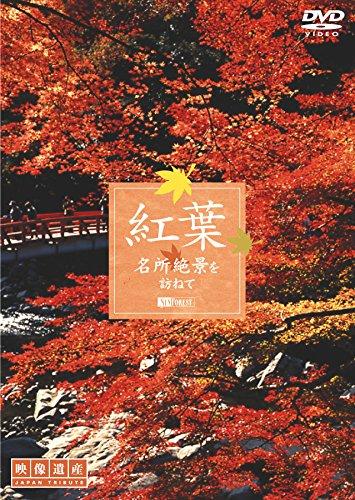 シンフォレストDVD 紅葉 名所絶景を訪ねて/映像遺産・ジャパントリビュートの詳細を見る