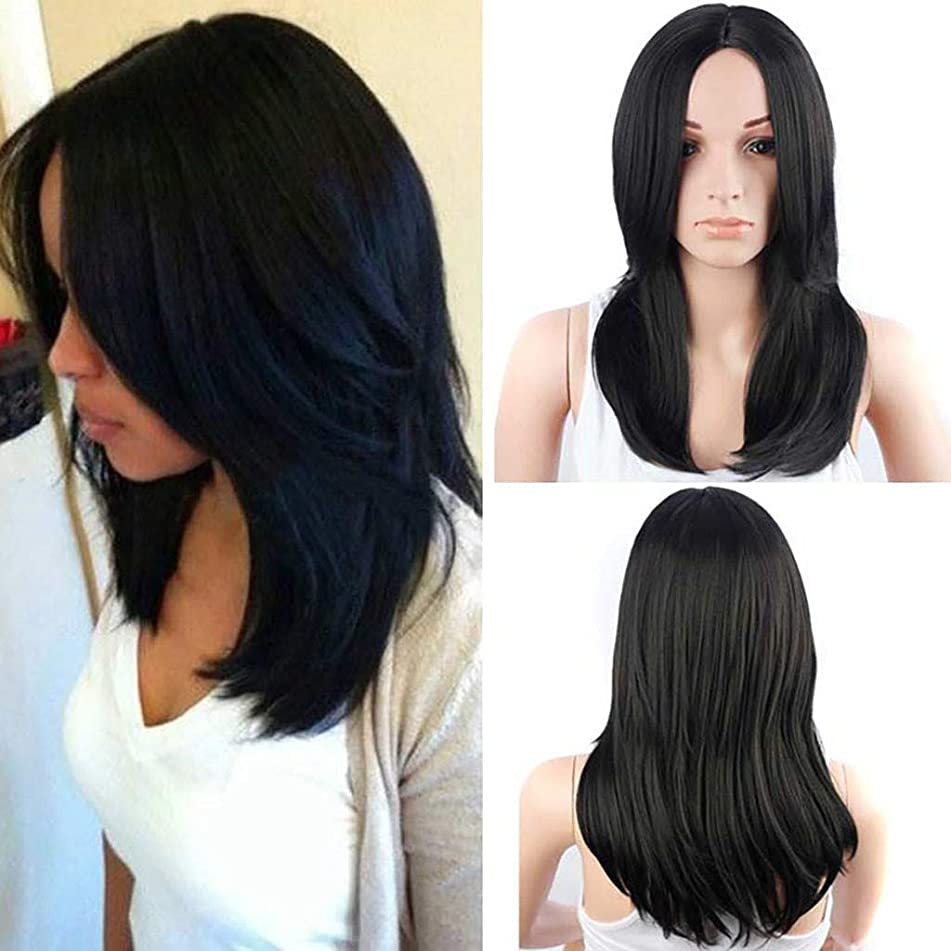 Black Ombre Sweet Baby Dark Roots Glueless Synthetic Wigs for Women Long Straight Middle Part Cosplay Heat Resistant 18 Inch (a)