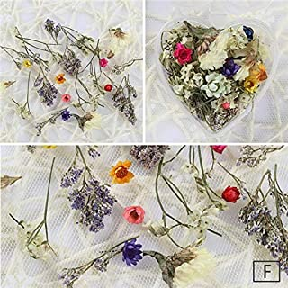 Nails Art Accessories - 1 Box Dried Flowers Nail Decoration Mixed Preserved Flower With Heart-Shaped Box DIY Manicure 3D Nail Decorations Nail Art Kit Nail Charms Nail Jewelry/Decorations - Pattern F