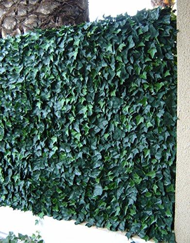 PEGANE Plaques murales carrées, Feuillage Effet Lierre Coloris Vert de 12 Dalles - Dim dal : 50 cm x 50 cm