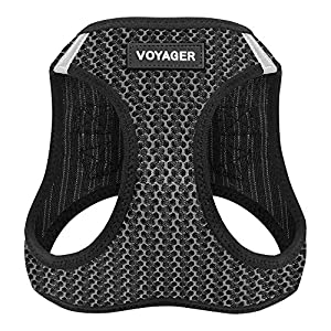 Best Pet Supplies Voyager Step-in Air Dog Harness – All Weather Mesh, Step in Vest Harness for Small and Medium Dogs