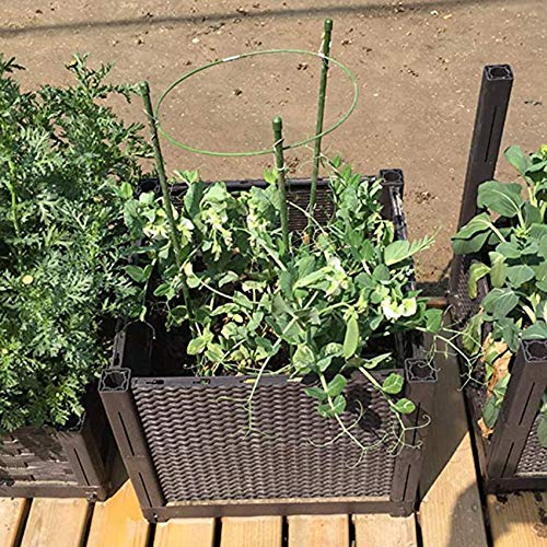 NAIHEN Plant Support Ring Adjustable Plant Trellises Garden Basket Plant Fixed Climbing