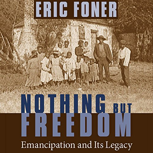 Nothing but Freedom audiobook cover art