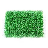 Simulazione di plastica Prato criptato con Fiori e Stelle Asilo Natale Matrimonio Finestra Tappeto zolla (Color : Green)