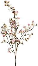 أزهار الكرز المجففة والنباتات البرية والزهور الاصطناعية ، 97 سم ، فرع الصيد ، لتزيين الشجر ، CD (اللون: B ، Exédié De : ال...