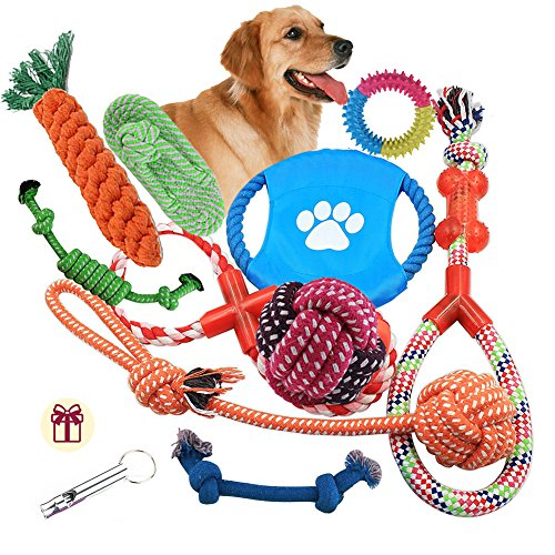 Adoya Dog Rope Toys 10 Pack Puppy Teething Chew Toy for Large Medium Small Dogs Breeds, Dog Toy Gift Set