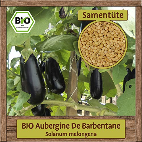 Samenliebe BIO Gemüse Samen Aubergine De Barbentane (Solanum melongena) | BIO Auberginesamen Gemüsesamen | Samenfestes BIO Saatgut für 1m²