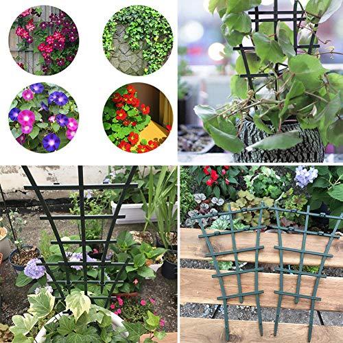 Happyshop 18 4Pcs Soporte de Enredadera de Plantas trepadoras ...