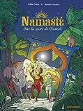 Namaste T1