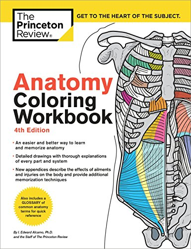 The Anatomy Coloring Workbook