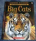 Big Cats (Usborne Discovery Internet-Linked)