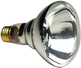 6 Qty. Halco 100W BR30 CL 12V Halco BR30CL100/12V 100w 12v Incandescent Clear Pool Lamp Lamp Bulb