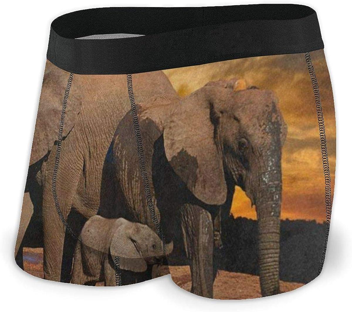 Mens Boxer Briefs Sunset African Elephant Breathable Underwear