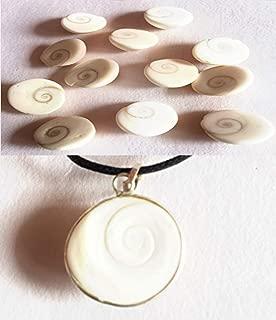 SSDG Best Combo Set of 12 Natural GOMTI (GOMATI) Chakra & GOMTI Chakra Pendant Laxmi Puja Mystic Hindu Miracle Imbalance Healing Blessed A+++ Quality