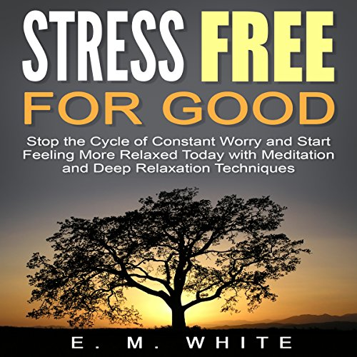 Stress Free for Good audiobook cover art