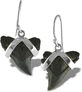 10 Shark Tooth Charm Pendant 10 Wire Wrapped Fossilized Shark Teeth for Necklace RP COA AM8B6-02